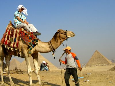 camel03.jpg